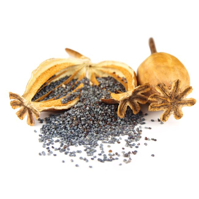 Birkes • Poppy seeds • Khus khus