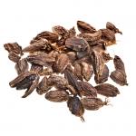 Brun kardemomme • Brown/black cardamom • Badi Elaichi