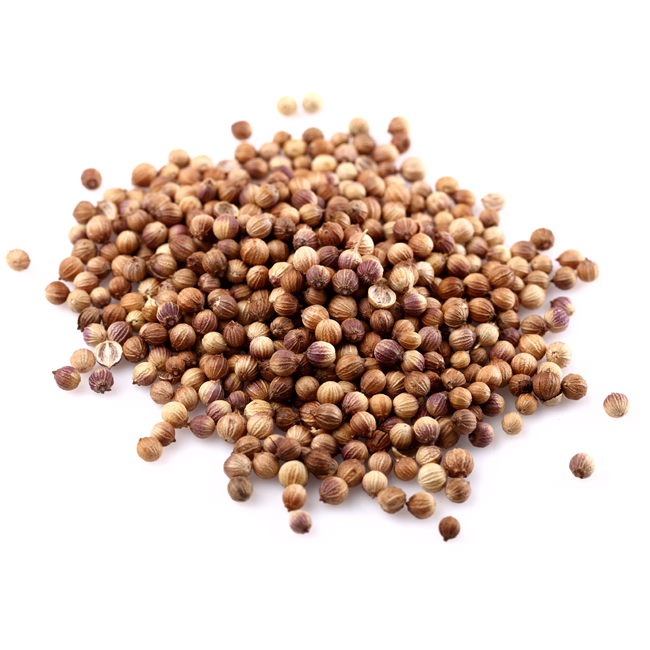 Korianderfrø, hele • Coriander seeds • Dhania