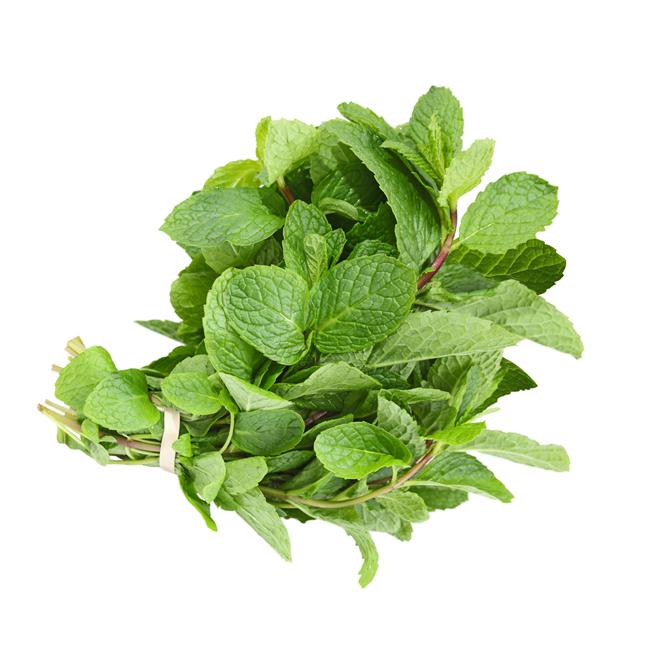 Mynteblade • Mint leaf • Pudina
