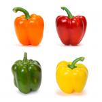 Peberfrugt • Bell pepper • Simla Mirch