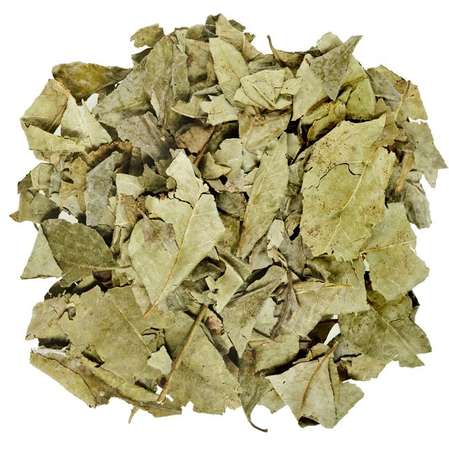 Karryblade, tørrede • Dried curry leaves • Kari Patta